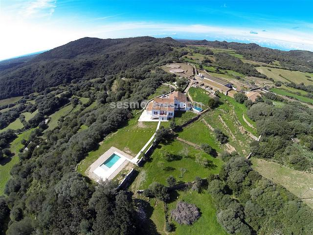 A magnificent country estate of 119 hectares of very fertile land where there are two houses: a main house which is almost completely renovated, 6 bedrooms, 3 bathrooms and a swimming pool, and another house attached but with independent access which is used by the farmer, and these total 643m² built area. There are also other large agricultural buildings (barns, warehouses, stables, pens, etc.), and a small refuge house located in a plain surrounded by mountains and from where you can enjoy watching numerous birds of prey in their natural environment. 
